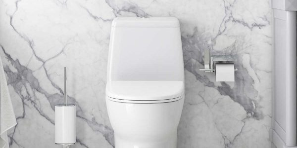 Toilet Replacement Services Toronto